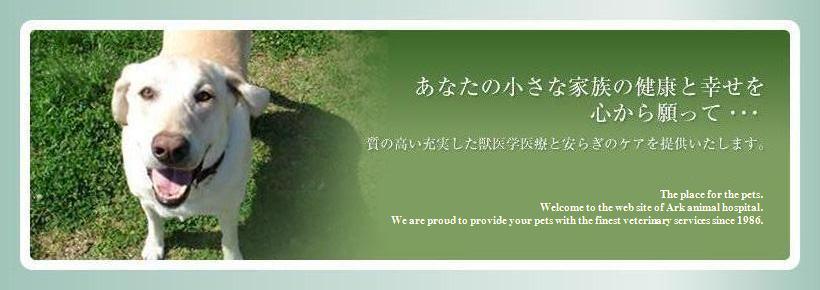 大田区田園調布の動物病院 -《アーク動物病院》