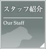 大田区田園調布の動物病院 -《アーク動物病院》のスタッフ紹介